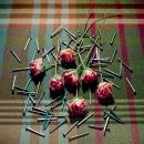 Nails and roses, 2004