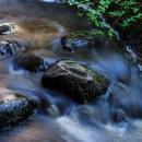 Forest creek, Sipoonkorpi, 2014
