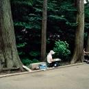 Kamakura, Japan, 2005
