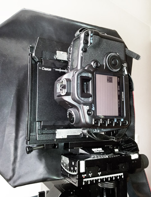 Complete setup: EOS 5D mkII attached to Sinar P2